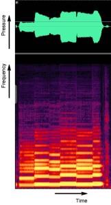 Clarinet analysis